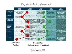 org maturity assessment example